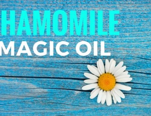 The Magic Of Chamomile essential oil