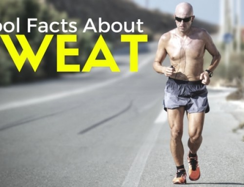 Interessante en coole facts over zweet