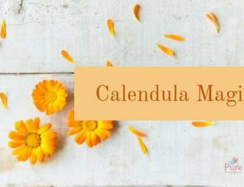 Why Calendula Is Great For Your Skin?